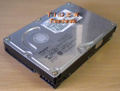 Maxtor D540X-4K Serie 4K060H3 Festplatte HDD ATA 60GB 3,5 f196