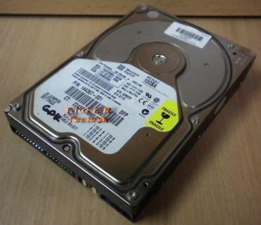 "Western Digital Expert WD102BA -40AK Festplatte HDD IDE 10254.8MB 3,5"" f277"
