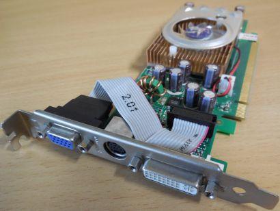 nVIDIA GeForce 7500LE 128MB 64Bit DDR2 PCI-E 802700700545 DVI-I S-Video VGA*g480